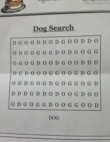 dog_search