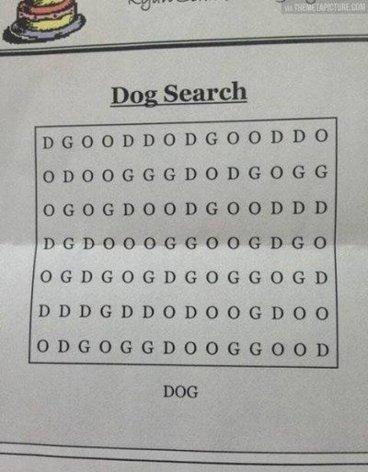 dog_search